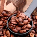 https://dolio.ru/wp-content/uploads/2012/12/certified-organic-coffee-150x150.jpg